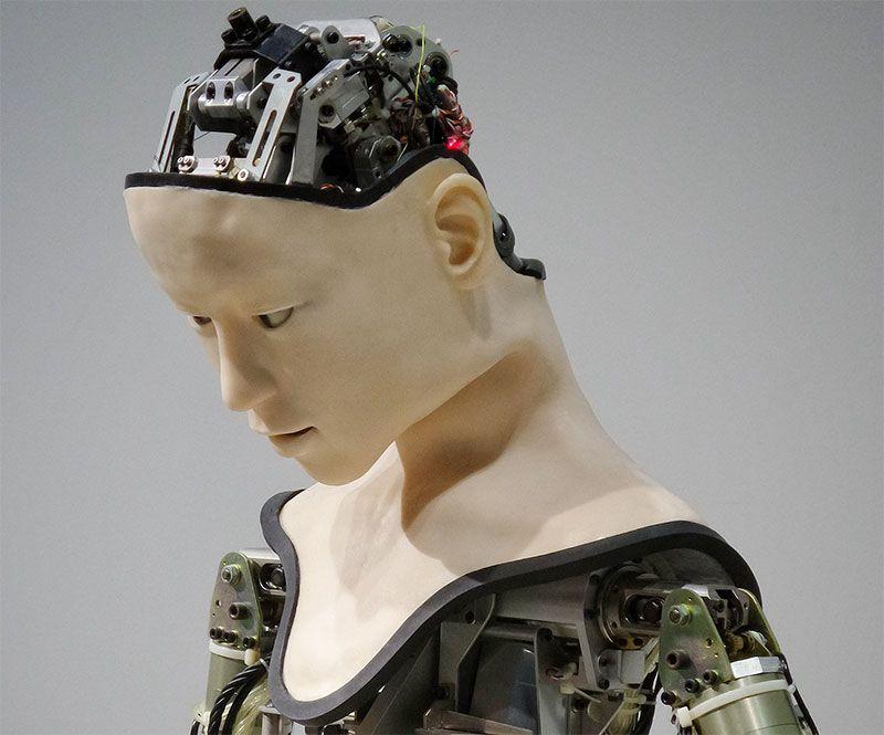 El sector de la imagen está a salvo de la robotización