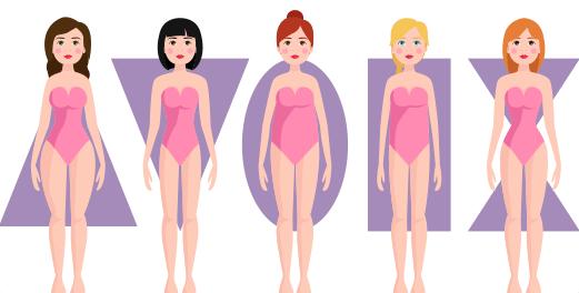 Tipologias Corporales de la Mujer